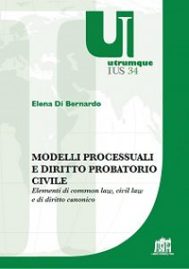 Copertina di 'Modelli processuali e diritto civile'