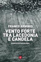 Vento forte tra Lacedonia e Candela - Franco Arminio