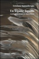 Un legame liquido. Cambiamenti di stato in Chiara d'Assisi - Santambrogio Cristiana