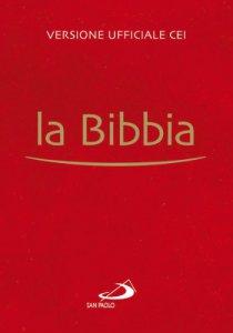 Copertina di 'La Bibbia (rilegata)'
