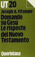 Domande su Gesù. Le risposte del Nuovo Testamento - Fitzmyer Joseph A.