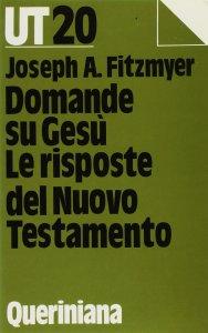 Copertina di 'Domande su Gesù. Le risposte del Nuovo Testamento'