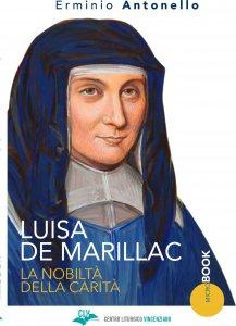 Copertina di 'Luisa De Marillac'