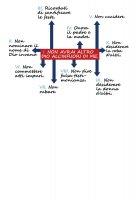 Immagine di 'T-shirt 10 comandamenti - Taglia L - DONNA'