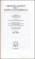 Il grande lessico dell'Antico Testamento. Vol IX - Fabry Heinz-Josef, Ringgren Helmer