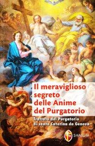 Copertina di 'Il meraviglioso segreto delle anime del purgatorio secondo santa Caterina da Genova e secondo la Chiesa'