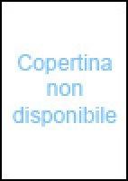 Competence, capacity, corpora. A study in corpus-aided language learning - Bernardini Silvia