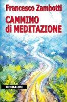 Cammino di meditazione. I comandamenti nel Vangelo - Zambotti Francesco