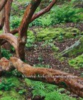 La bellezza di legno - Andreoli Vittorino