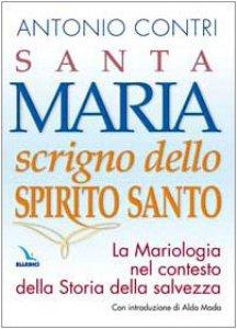 Copertina di 'Santa Maria scrigno dello Spirito Santo. La mariologia nel contesto della storia della salvezza'