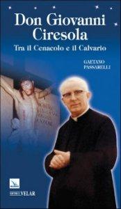 Copertina di 'Don Giovanni Ciresola. Tra il Cenacolo e il Calvario'