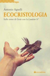 Copertina di 'Ecocristologia'