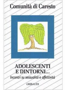 Copertina di 'Adolescenti e dintorni...'