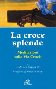Copertina di 'La croce splende. Meditazioni sulla via crucis'