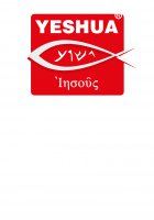 "Immagine di 'T-shirt ""Iesoûs"" targa con pesce - taglia L - uomo'"