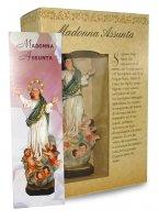 Immagine di 'Statua della Madonna Assunta in cielo da 12 cm in confezione regalo con segnalibro'