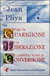 Copertina di 'Dopo la guarigione e la liberazione il cammino verso la conversione'
