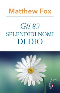 Copertina di 'Gli 89 splendidi nomi di Dio'