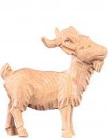 Caprone R.K. - Demetz - Deur - Statua in legno dipinta a mano. Altezza pari a 15 cm.