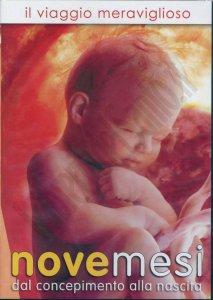 Copertina di 'Nove mesi. Il viaggio meraviglioso dal concepimento alla nascita'