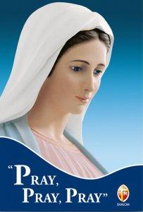 Copertina di 'Pray, pray, pray'