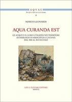 Aqua curanda est. Le acque e il loro utilizzo nei territori di Friburgo in Brisgovia e Catania dal XIII al XVI secolo - Leonardi Marco