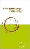 Viaggio verso il bene comune - Brueggemann Walter