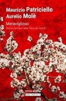 Meraviglioso - Aurelio Molè, Maurizio Patricello