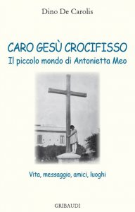 Copertina di 'Caro Gesù crocifisso'