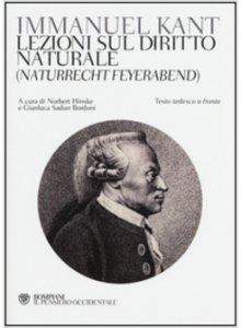 Copertina di 'Lezioni sul diritto naturale (Naturrecht Feyerabend)'