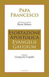 Copertina di 'Esortazione Apostolica Evangelii Gaudium'