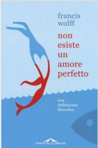 Copertina di 'Non esiste un amore perfetto'