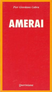 Copertina di 'Amerai. Riflessioni sull'amor di Dio nella vita di ogni giorno'