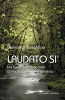 Laudato si' - Domenico Sorrentino