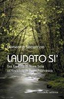 Laudato si' - Domenico Sorrentino