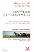 Il capitalismo in un contesto ostile - Giovanni Arrighi, Fortunata Piselli