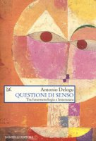 Questioni di senso. Tra fenomenologia e letteratura - Delogu Antonio