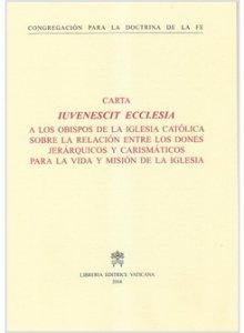 Copertina di 'Iuvenescit Ecclesia. Spagnolo'