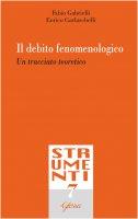 Il debito fenomenologico - Fabio Gabrielli , Enrico Garlaschelli