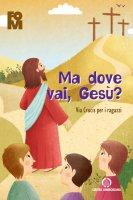 Ma dove vai Gesù?