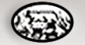 Logo di 'Bonanno'
