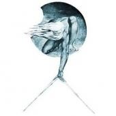 Logo di 'La Scuola di Pitagora'